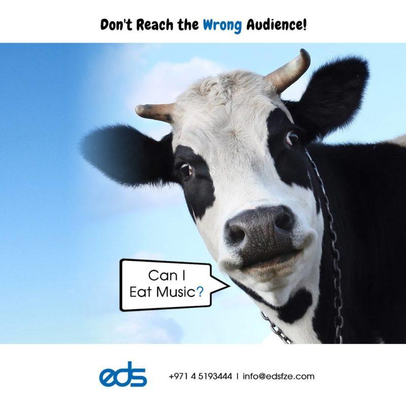 target audience in social media