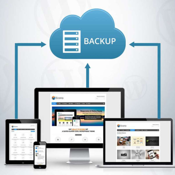 Importance of Website Backup and Protection!